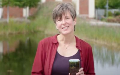 Prof. Dr. Katja Bühler ist neues Mitglied im Nationalen Wasserstoffrat